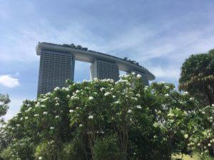 4月26日募集開始)ママ向け 青木ゆかのシンガポール「ずるい英語」講座情報