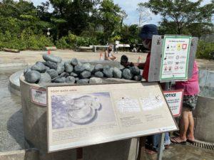 シンガポールの温泉で足湯と温泉卵を堪能した話〜センバワン温泉公園〜
